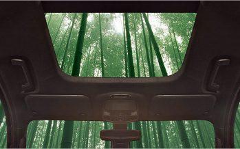 Ford เริ่มศึกษาวิธีการนำไม้ไผ่มาใช้ในการผลิตชิ้นส่วนรถยนต์